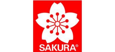 Sakura of America